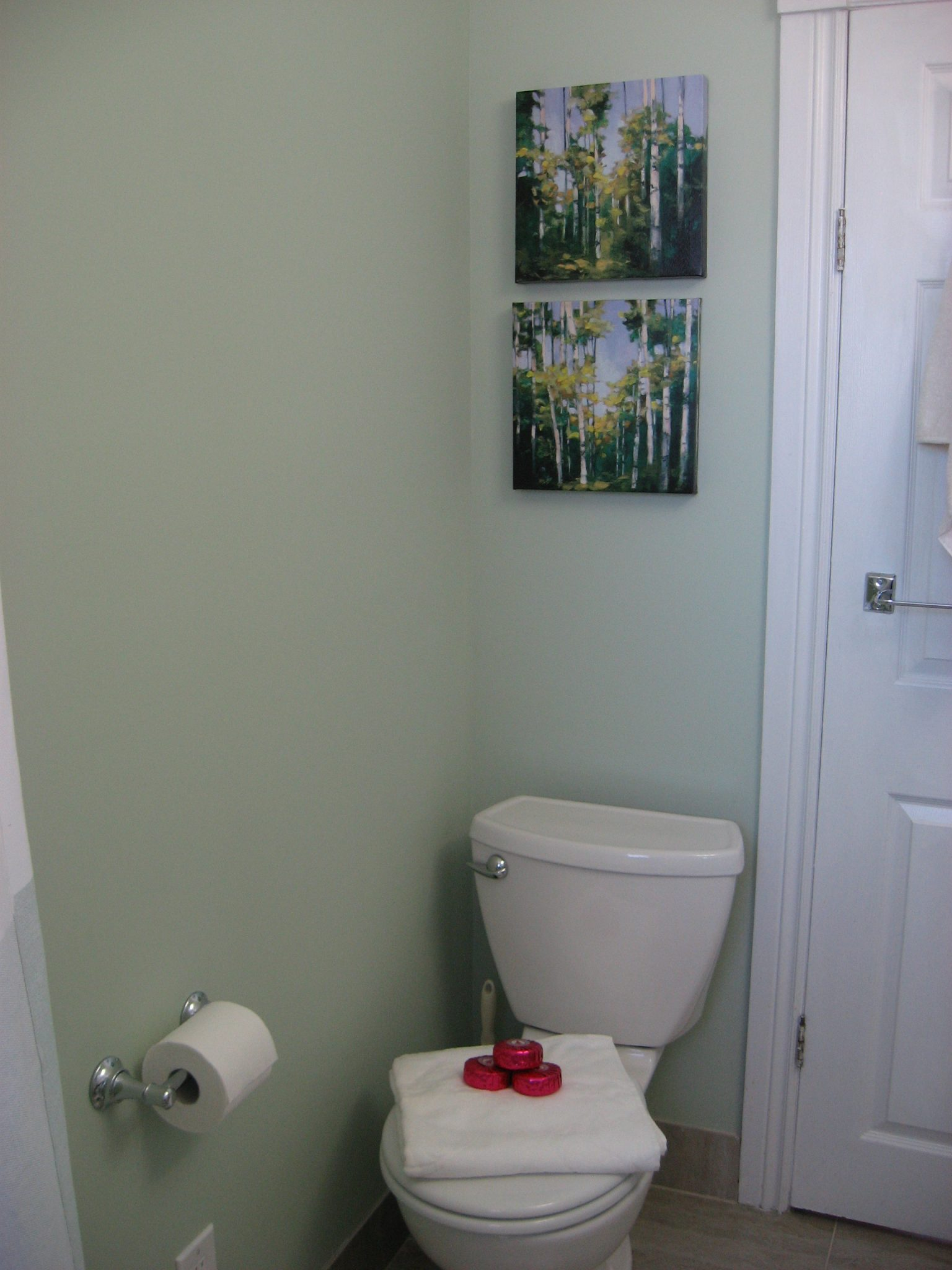 Tiny Bathroom After